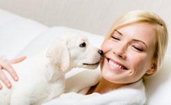 dog licking face