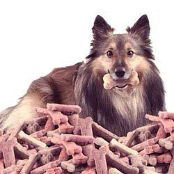 essential ingredients for shelties