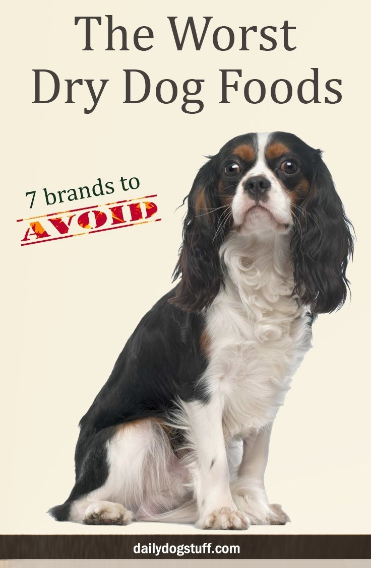 The Worst Dry Dog Foods 7 Brands To Avoid Daily Dog Stuff