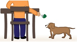 feeding dog from table