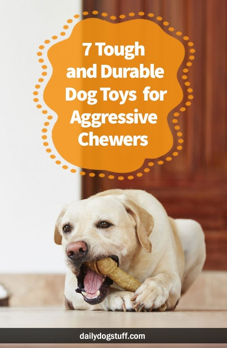 7 Tough and Durable Dog Toys for Aggressive Chewers
