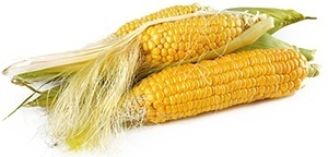 Corn and Soy Fillers