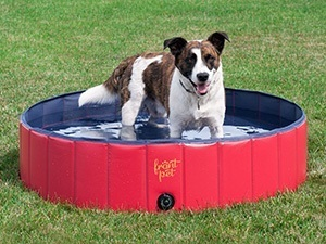 Frontpet Foldable Dog Pet Pool Bathing Tub
