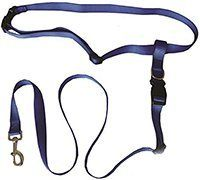 Running Dog Leash Hands Free – Including LED Light. Great for Walking, Running