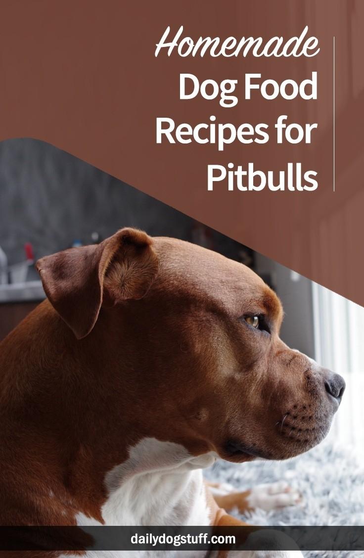 Healthy Dog Food Recipes For Pitbulls