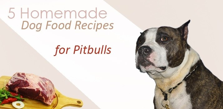 homemade dog food recipes for pitbulls