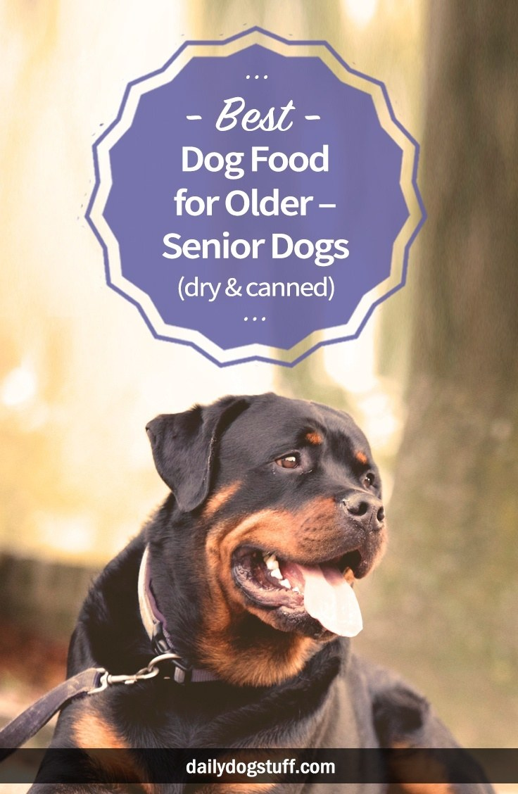 Best Dog Food For Older Senior Dogs Dry Canned Daily Dog Stuff