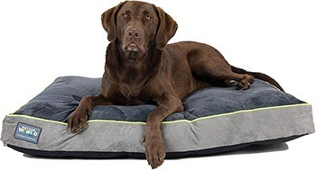 First-Quality Orthopedic Dog Bed |Pure Premium Shredded Memory Foam Ideal for Aging Dogs | Eases Pain of Arthritis & Hip Dysplasia