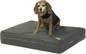 "Orthopedic Dog Bed - 5"" Thick Supportive Gel Enhanced Memory Foam - Made in the USA"