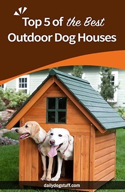 Top 5 of the Best Outdoor Dog Houses
