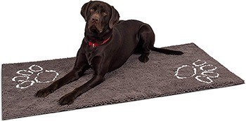 Best Doormats For Dogs W Dirty Feet Daily Dog Stuff