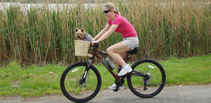 girl riding a bike with a dog basket attached to the front of the bicycle frame