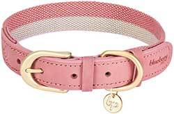 Blueberry Pet 13 Colors Polyester Fabric Webbing and Soft Genuine Leather Dog Collars, Leashes
