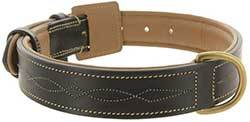 Viosi Leather Padded Dog Collar - Made of Genuine Kingston Luxury Leather
