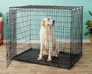 MidWest Solutions Series XX-Large Heavy Duty Double Door Collapsible Wire Dog Crate, 54-in