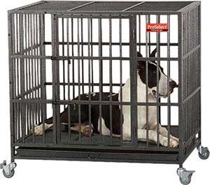 ProSelect Empire Single Door Steel Dog Crate