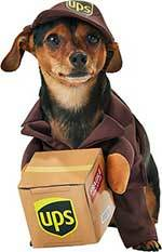 California Costumes UPS Delivery Driver Dog & Cat Costume