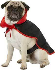 Frisco Vampire Cape Dog & Cat Costume