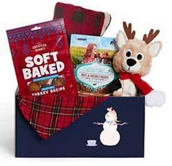 Goody Box Holiday Toys, Treats & Apparel