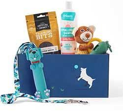Goody Box Puppy Toys, Treats & Accessories