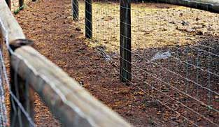 double fence