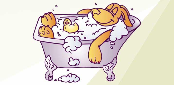 Dog bathing in a dog bath tub