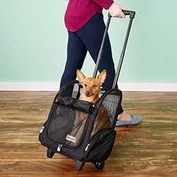 Snoozer Pet Products Roll Around 4-in-1 Travel Dog & Cat Carrier Backpack
